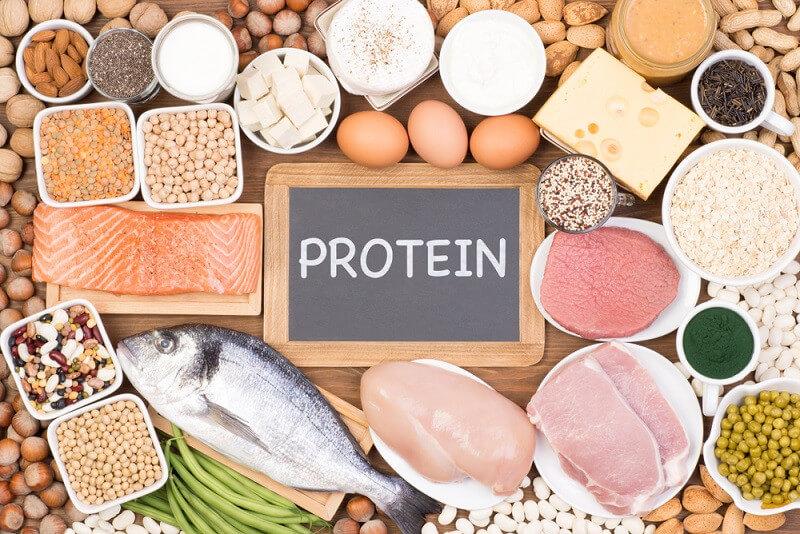 protein deposu 2